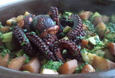 hobotnica ispod saca