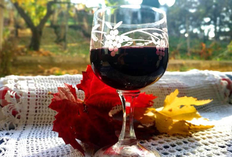 Marinirinje glass of red wine Foto M Jablanov