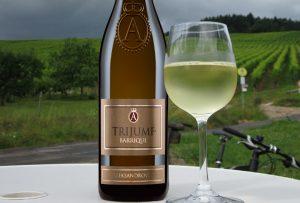 Mariniranje wine trijumf barique